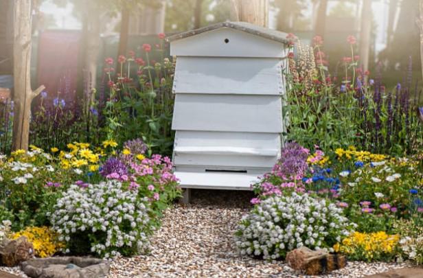 ruche-jardin-abeille