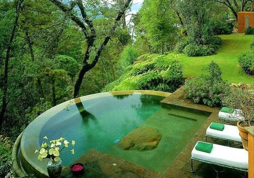 piscine-naturel-exterieur