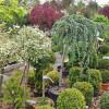 Préparez votre jardin pour l´hiver