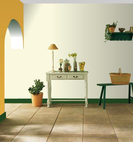 Choisir Couleur Peinture Murale Idées Repeindre Salon
