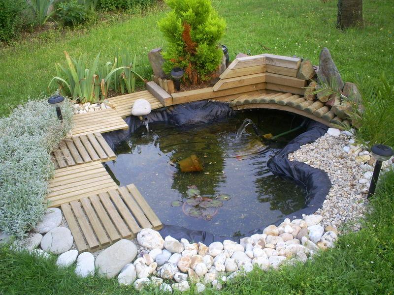 am nager un jardin aquatique. Black Bedroom Furniture Sets. Home Design Ideas